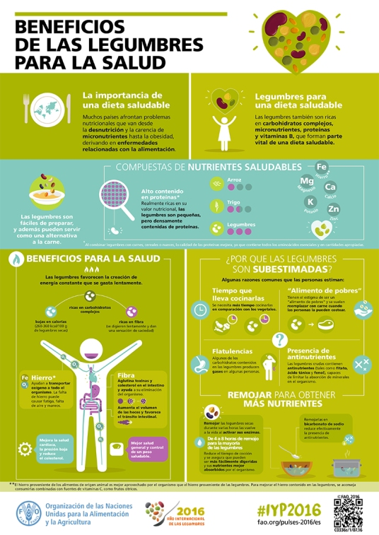 FAO-Infographic-IYP2016-3-Health Benefits of Pulses-es.jpg